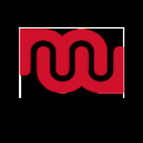Marte Meo RLW - Die Wachstumswerkstatt